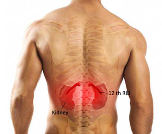 Low Back Pain 02 - کمر درد - کمردرد