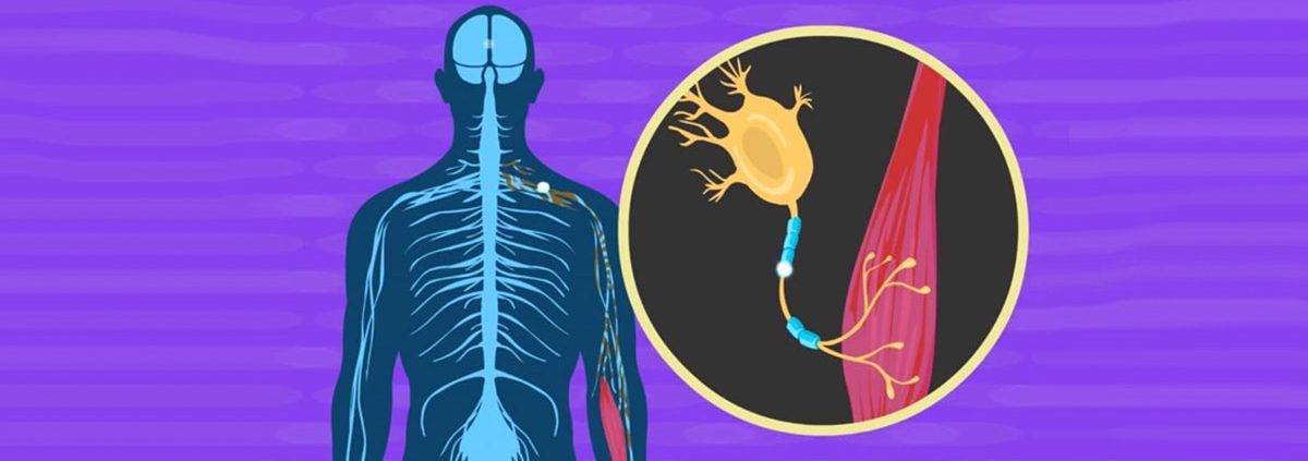New ALS treatment - Dr Amin Azhari Physiatrist - دکتر امین اظهری