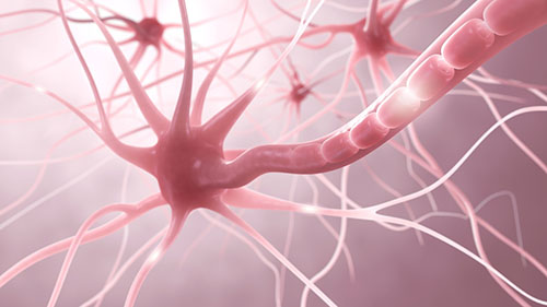 multiple sclerosis img-04