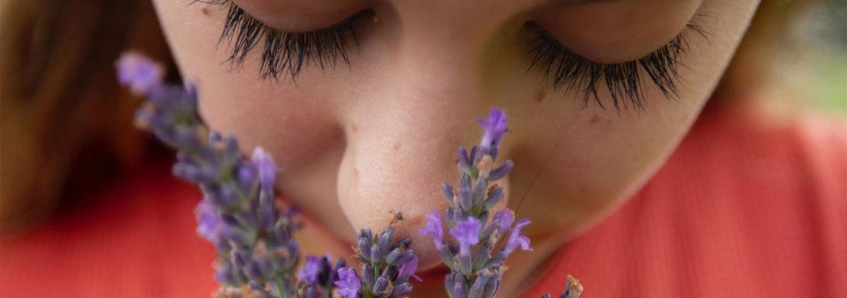 How COVID-19 Causes Loss of Smell - علت کاهش بویایی در جریان بیماری کرونا مشخص شد؟