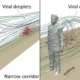 Fast Walking in Narrow Corridors Can Increase COVID-19 Transmission Risk - راه رفتن سریع در راهروهای باریک می تواند سبب افزایش سرایت ویروس کرونا گردد