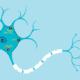 ALS neuron damage reversed with new compound - امیدهای تازه برای درمان بیماری ALS